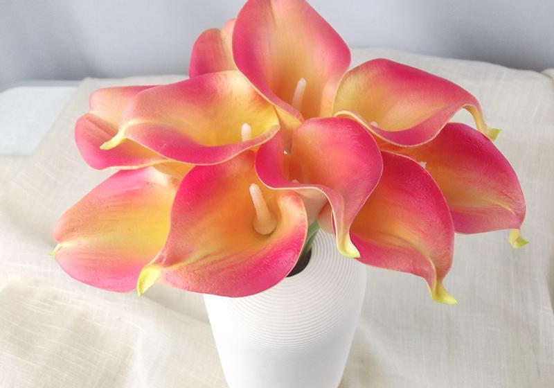 Calla Lily Flower-003