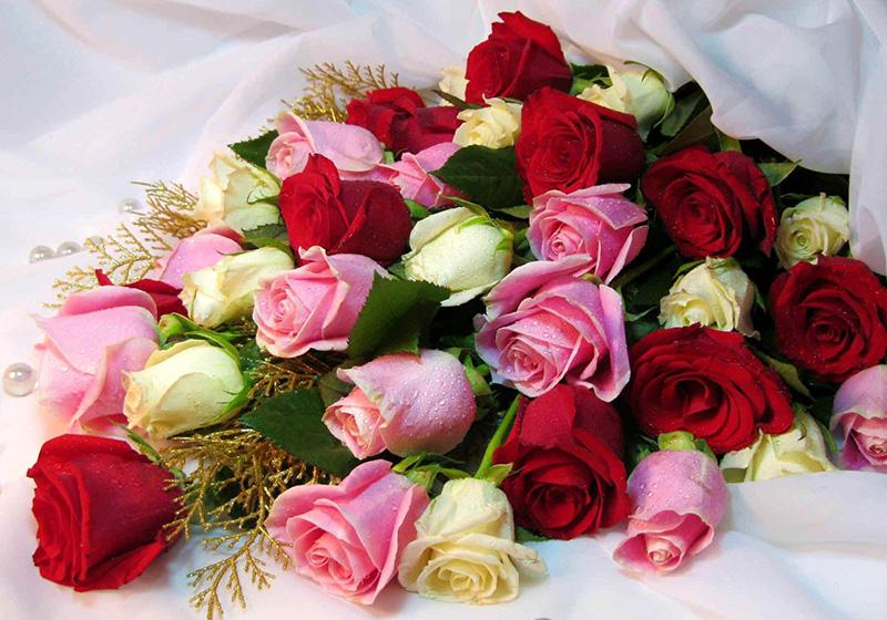 Rose Bouquets-008