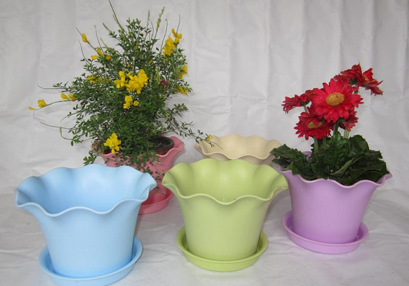 Plastic Containers-006