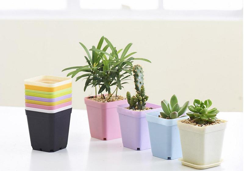 Plastic Containers-007
