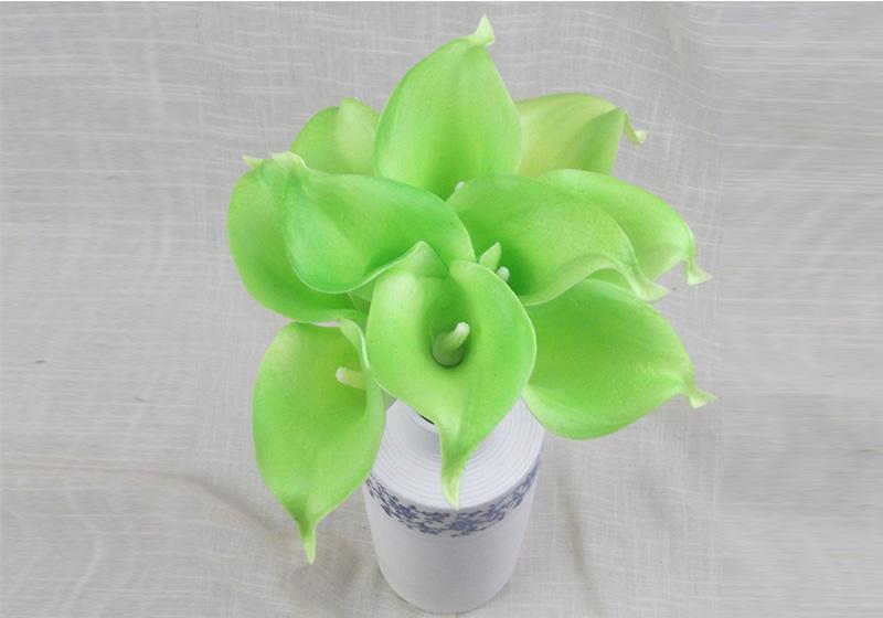 Calla Lily Flower-007