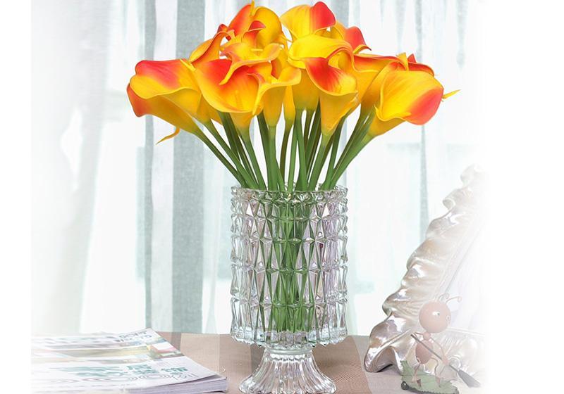 Calla Lily Flower-008