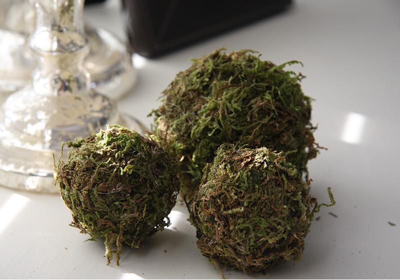 Moss Balls-002