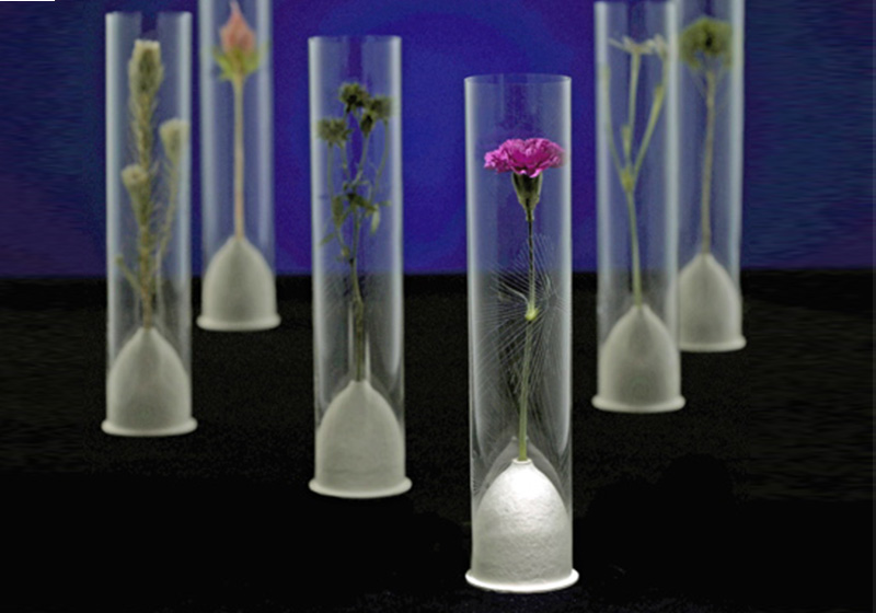 Floral Water Tubes-002