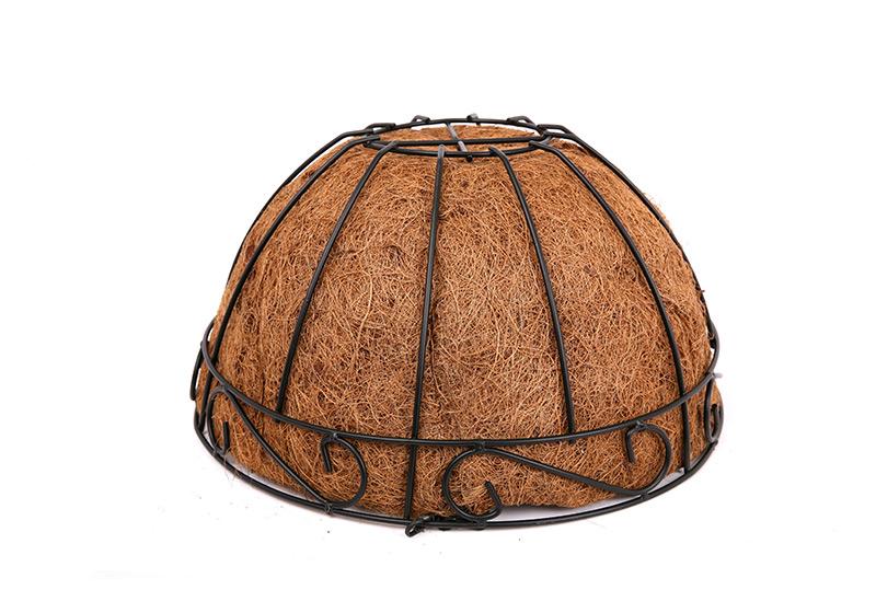 Coconut CoCo Liner-002
