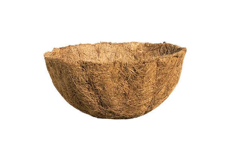 Coconut CoCo Liner-007