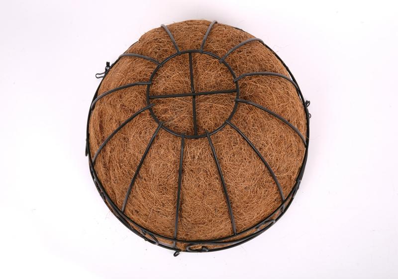 Coconut CoCo Liner-0010