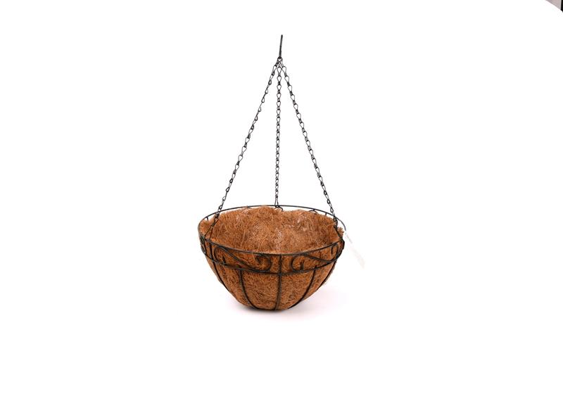 Coconut CoCo Liner-0012